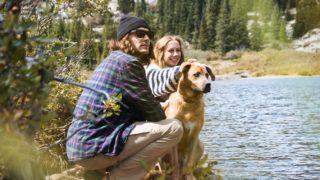 犬と男と女