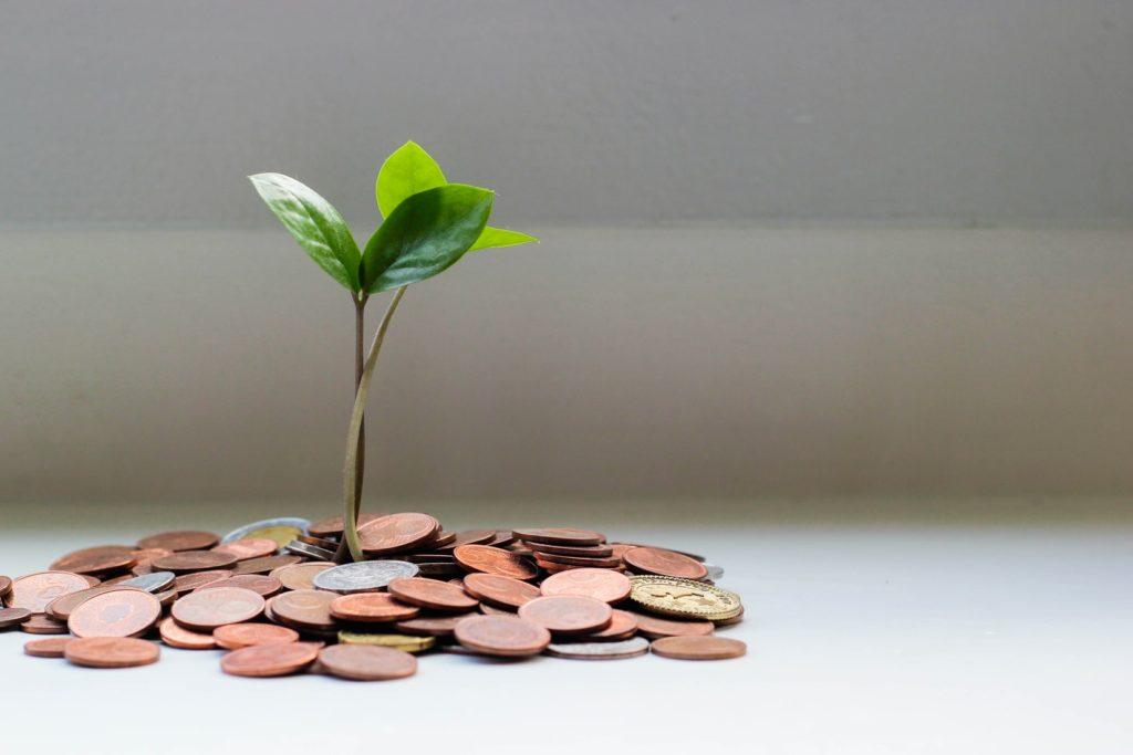 お金に新芽が生えている